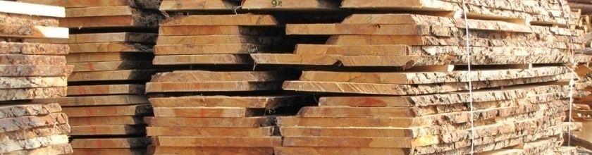 Mediena ir jos apdorojimas