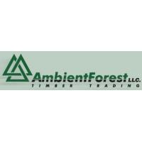 AMBIENT FOREST L.L.C. atstovybė