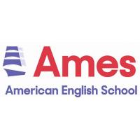 American English School, Šiaulių Filialas, VŠĮ
