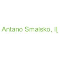 Antano Smalsko, IĮ