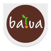 BAIVA, UAB