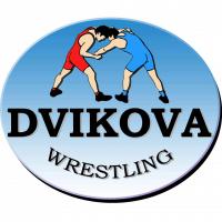 Dvikova, Sporto Klubas