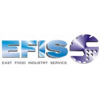 EFIS, UAB