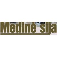 MEDINĖ SIJA, UAB