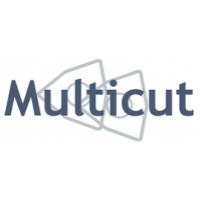 Multicut, UAB