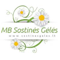 Sostinės gėlės, MB